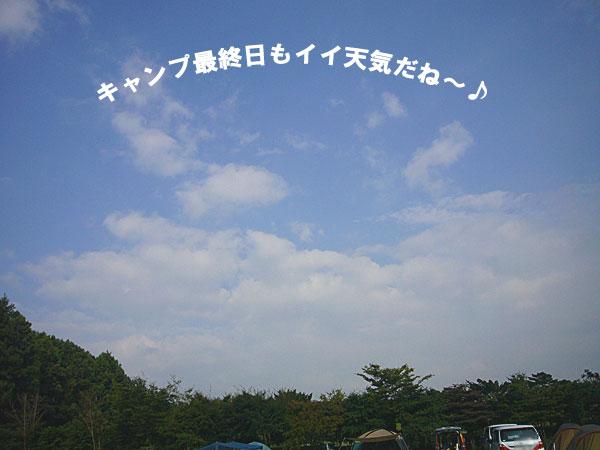 P1120419.jpg