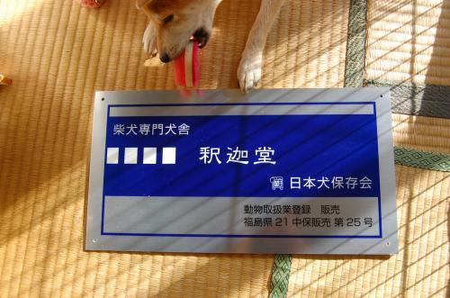 32_20101027145914.jpg