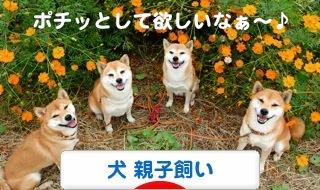 1_20111220205623.jpg