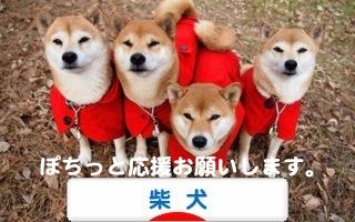 1_20120207000405.jpg