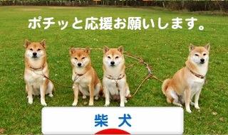 2_20111220205622.jpg