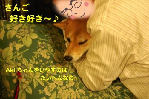 3_20111208233757.jpg