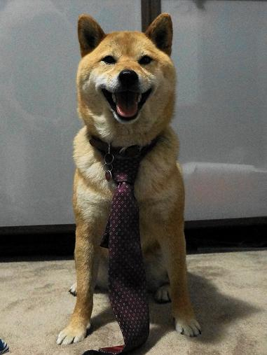 Jessie with tie