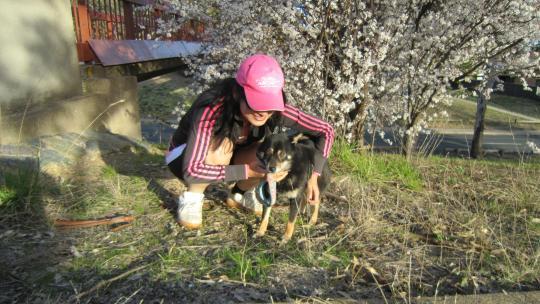 Picture+341_convert_20110909134852.jpg