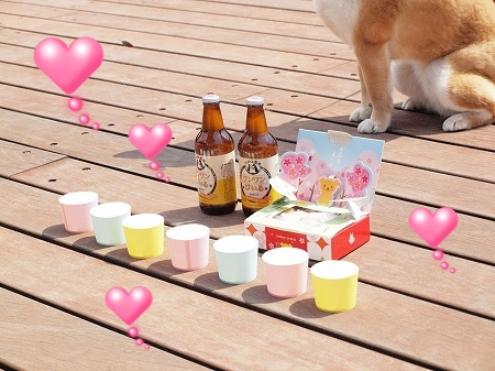 わんわんビールとお花見弁当♪