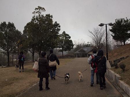 雪がちらつく寒い日