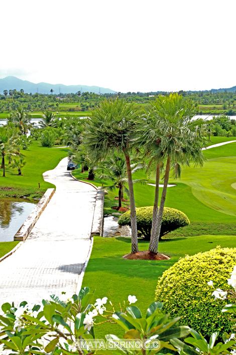 Golf IMG_9728 470