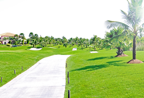 Golf IMG_9674 02 470