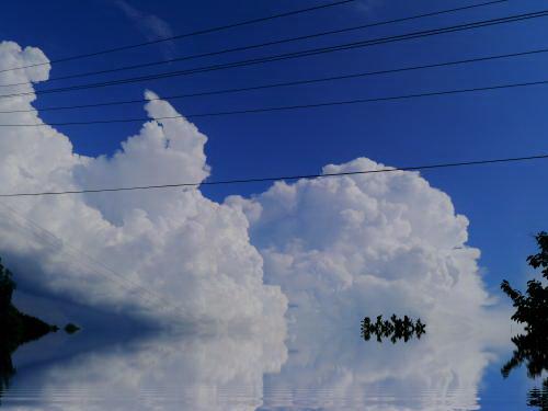 水辺の入道雲