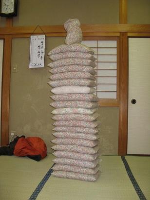 110122kyoutoshirakawagou (14)
