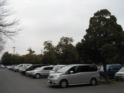 20110214washinomiya (7)