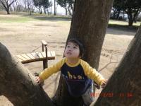 049_convert_20110227203329.jpg