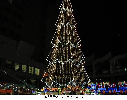 20111124_2.jpg