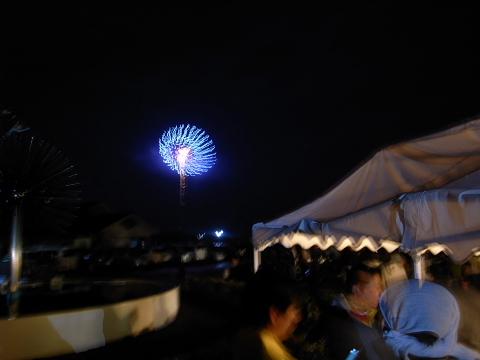 2012huyuhanabi6.jpg
