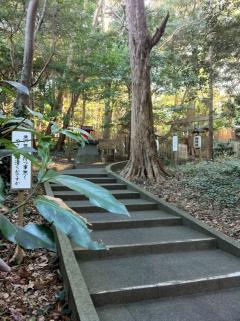白浜神社 019