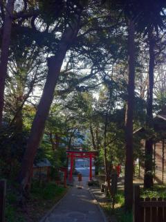 白浜神社 036