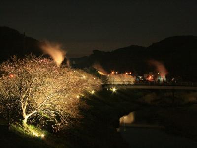 湯けむり橋IMG_0056