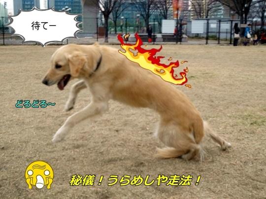 DSC0.jpg