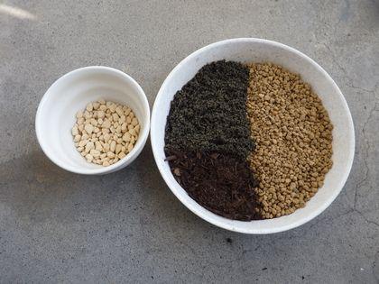 鉢と土の比率