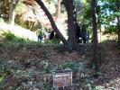 芦辺茶屋跡1