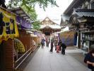 菊まつり2011-2