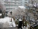 湯島天神201202その5