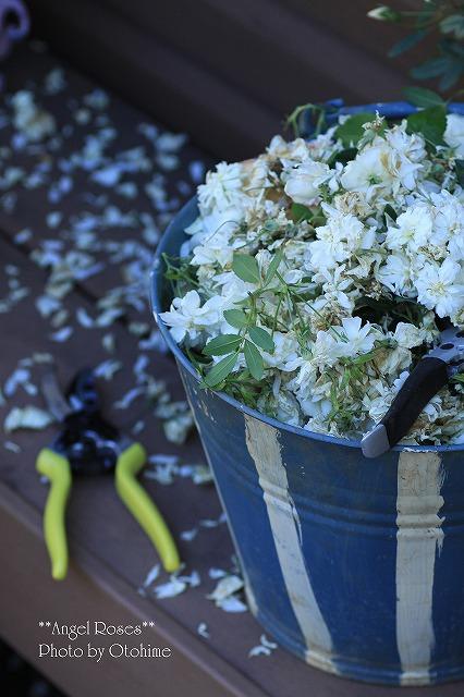 IMG_6391花がら切り