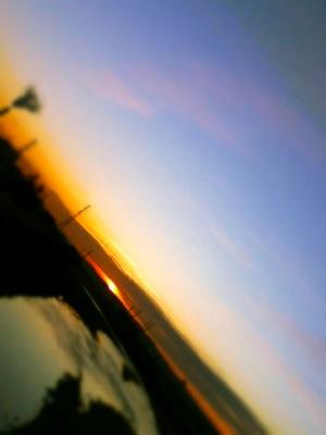 th_写真(7)