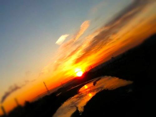 th_photo(1).jpg