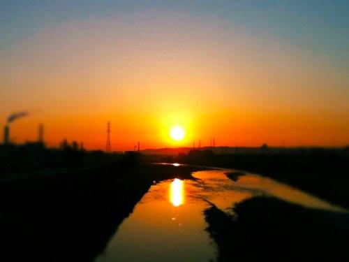 th_photo(3).jpg