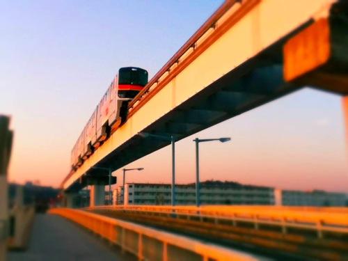 th_photo(4).jpg