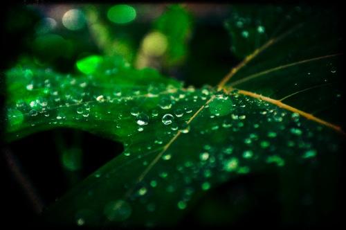 th_photo20120216193722.jpg