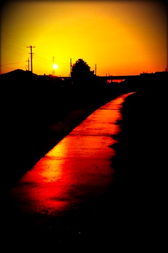th_photo20120425201419.jpg