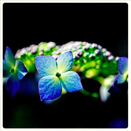 th_photo20120529123358.jpg