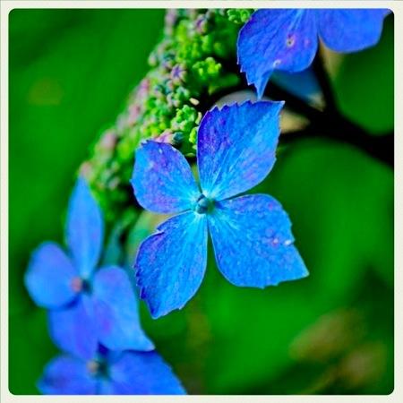 th_photo20120529182555.jpg