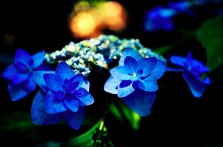 th_photo20120611104706.jpg