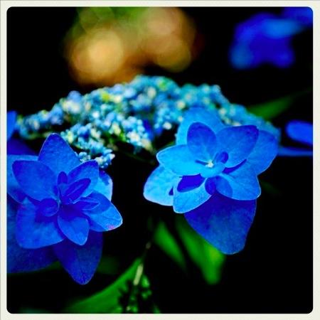th_photo20120611104724.jpg