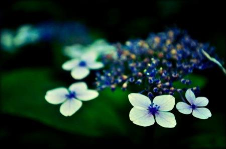 th_photo20120618151310.jpg