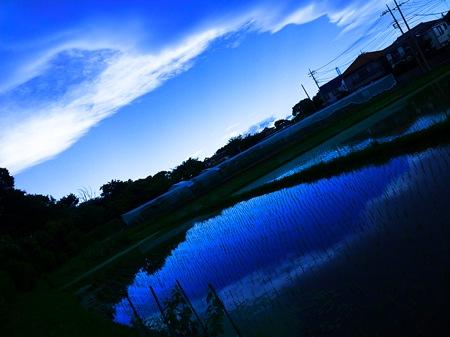 th_photo20120621144621.jpg