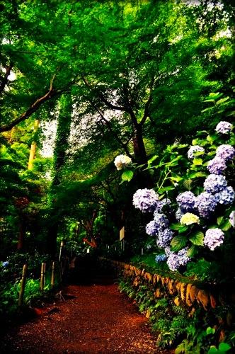 th_photo20120711203404.jpg