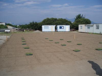 芝の苗の植付