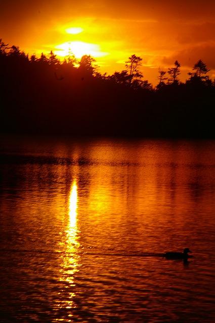 白駒池の朝焼け