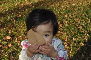 葉っぱ食べてみました