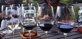 4 wine tasting