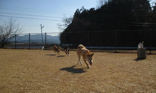 20140112-26.jpg