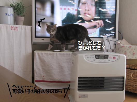 IMG_3848_cc.jpg