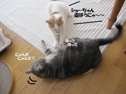 akaku1.jpg