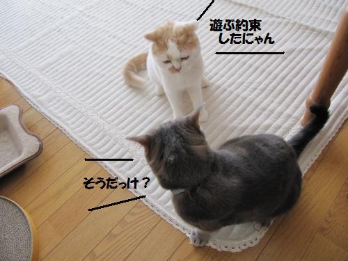 akaku2.jpg