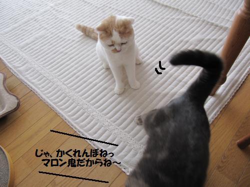 akaku3.jpg
