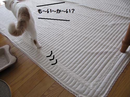 akaku4.jpg